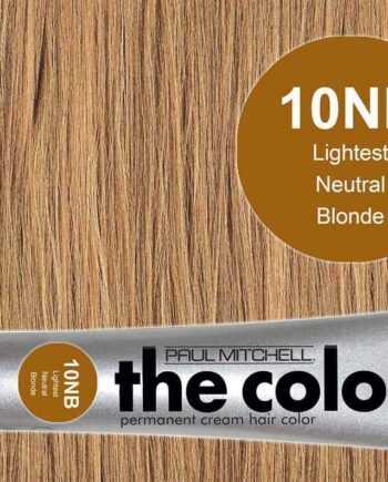 3 oz. 10NB, Lightest Neutral Blonde – PM The Color