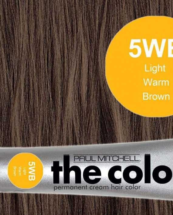 5WB-Light Warm Brown - PM the color