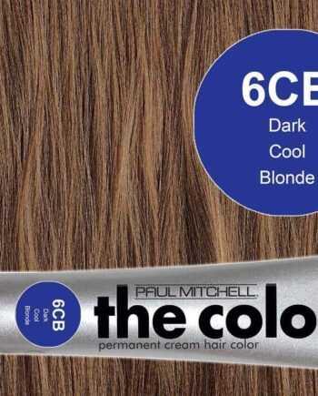 3 oz. 6CB-Dark Cool Blonde – PM The Color
