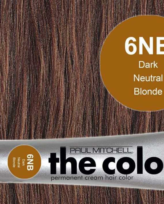 6NB-Dark Neutral Blonde - PM the color