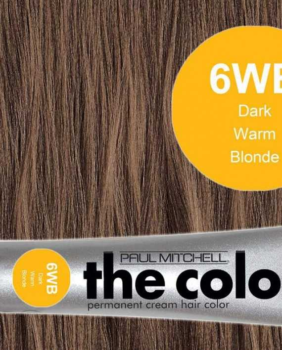 6WB-Dark Warm Blonde - PM the color
