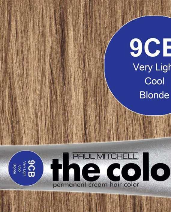 9CB-Very Light Cool Blonde - PM the color