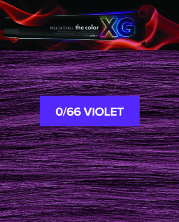 66 (Violet) - Paul Mitchell the color XG